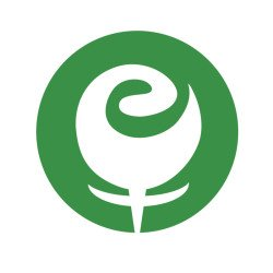 Eli-Rose-Social-Media-Logo-2015