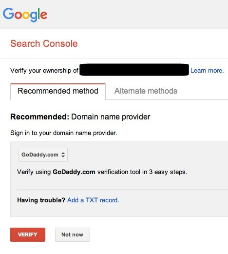 Verify site with domain name provider