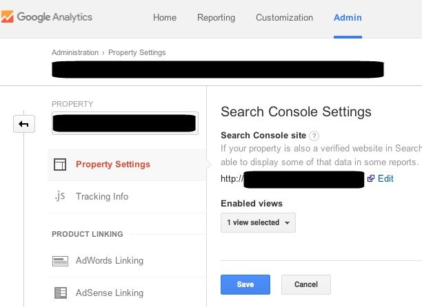 Website Search Console verification enabled