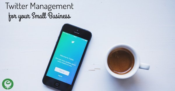 Twitter Account Management Service for your Small Business