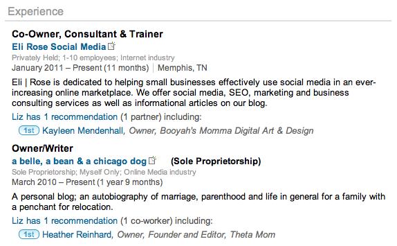 LinkedIn-Profile-Experience