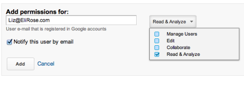 Select Google Analytics new user permissions