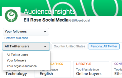 Change audience insights Twitter