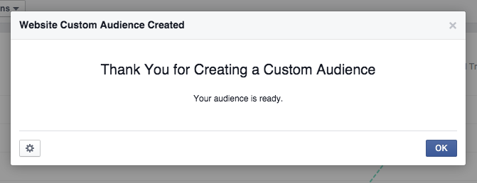 Website custom audience created