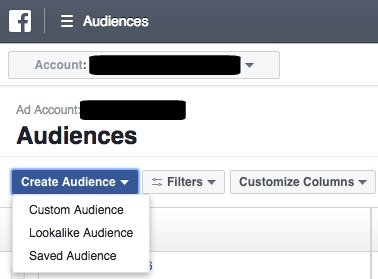 Facebook Ads Manager Create Audience