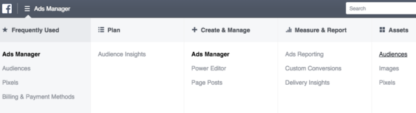 Facebook Ads Manager Audiences Tab