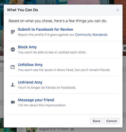 Submit fake Facebook profile for review