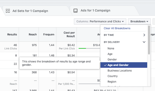 Facebook Ad Breakdowns