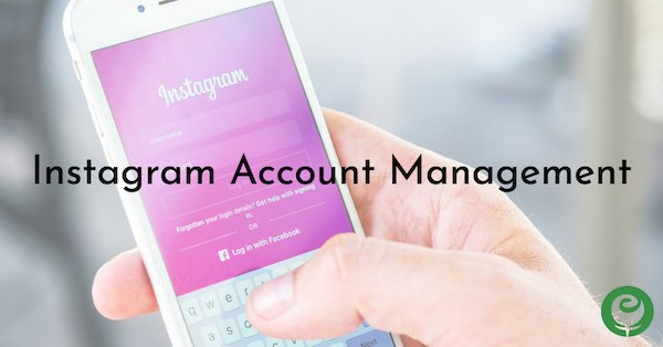 Instagram Account Management Service