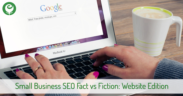 Small Business Website SEO Fact vs Fiction