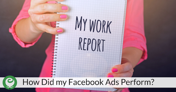 How did my Facebook Ads Perform?